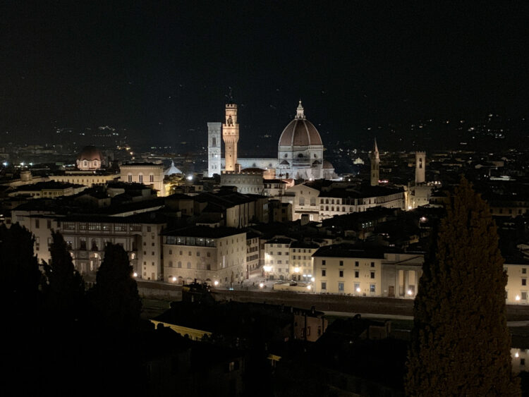 View of Florence from the roof