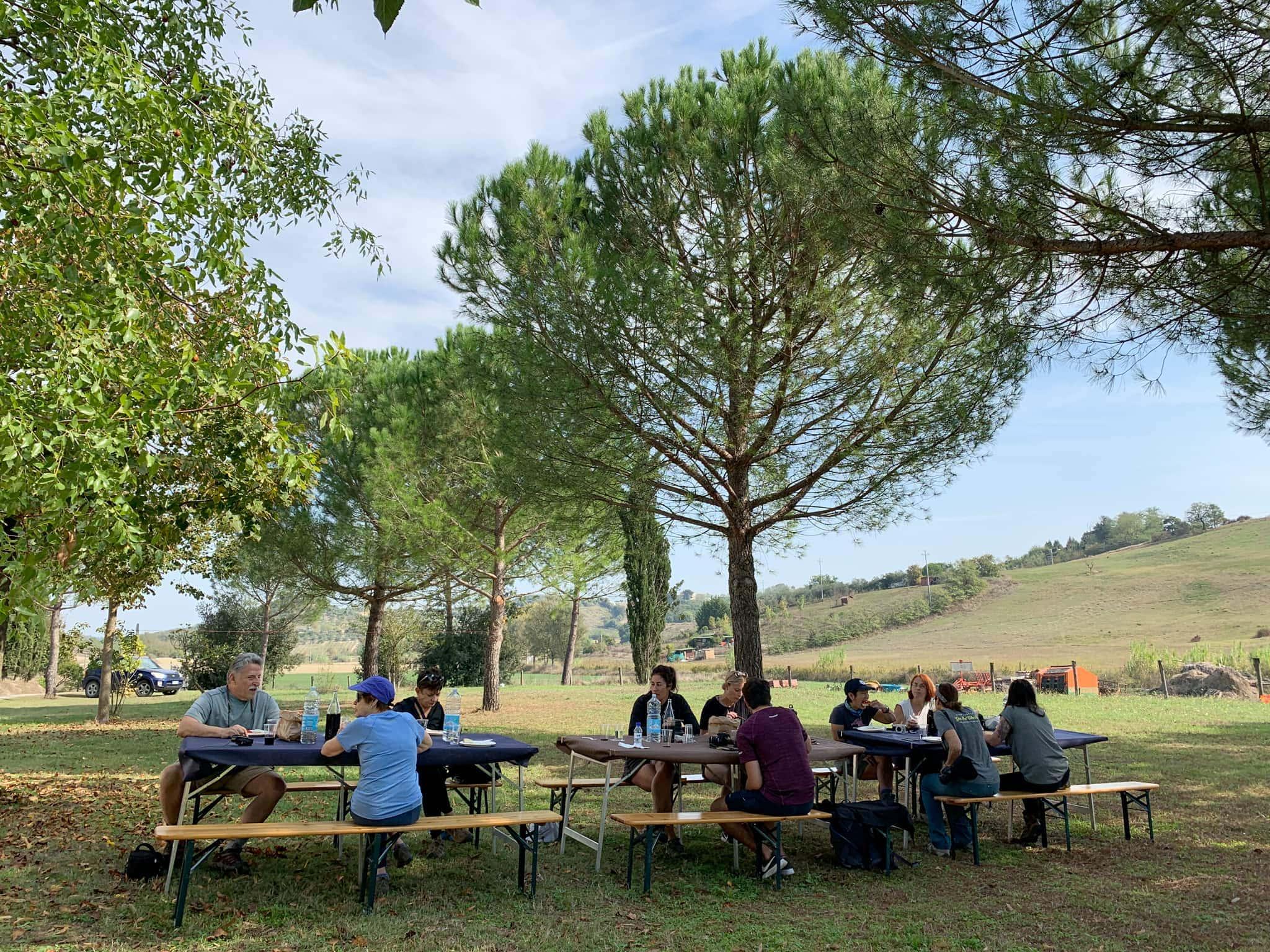Organic farm in Tuscany, Italy