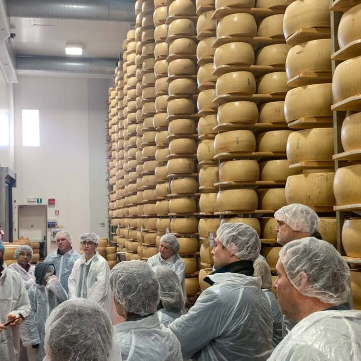 Touring a Parmigiano Reggiano cheese factory