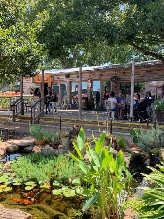 A koi pond outside Cosmic, one of the best coffee shops in south Austin