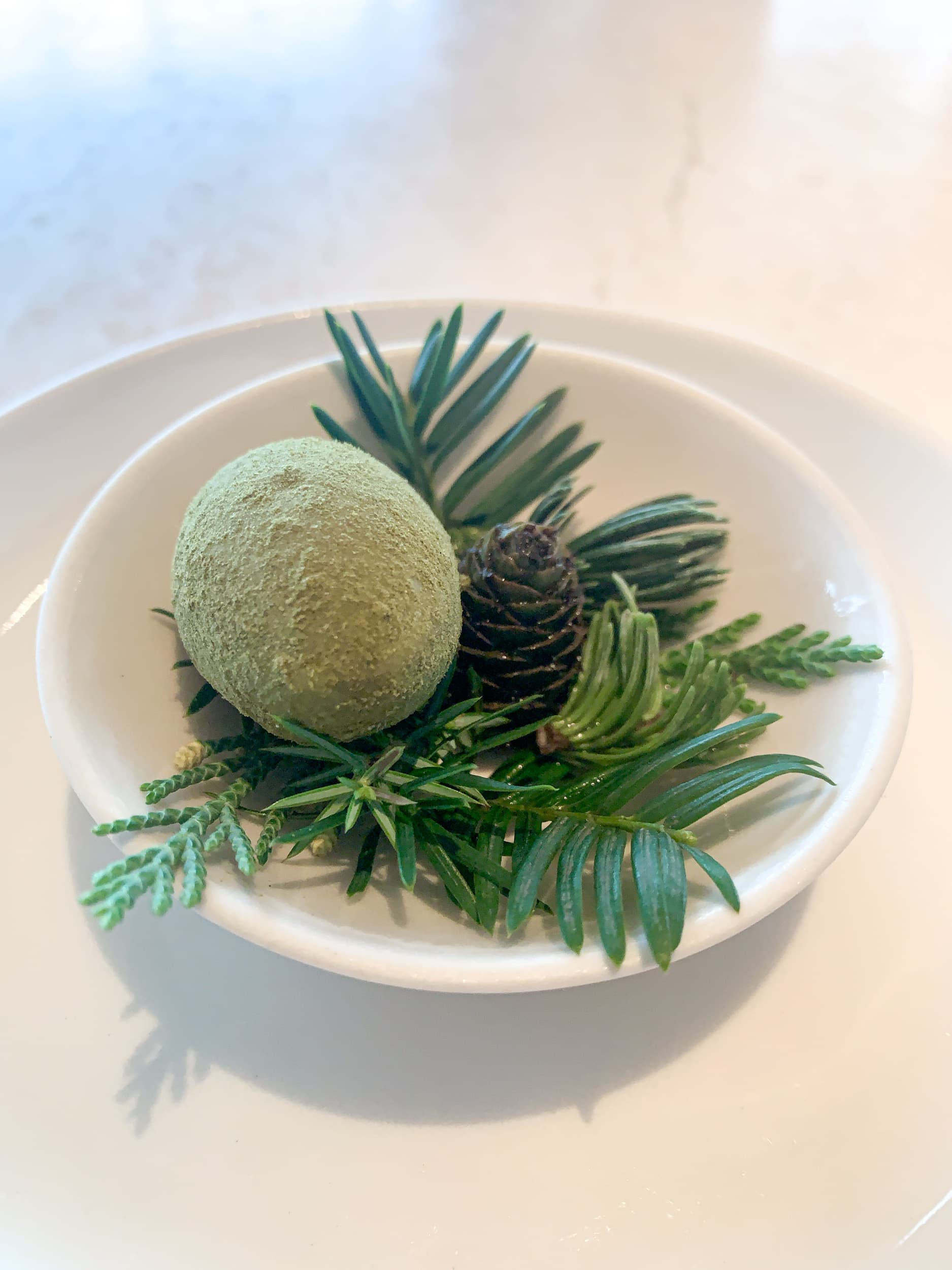 Green egg with pine