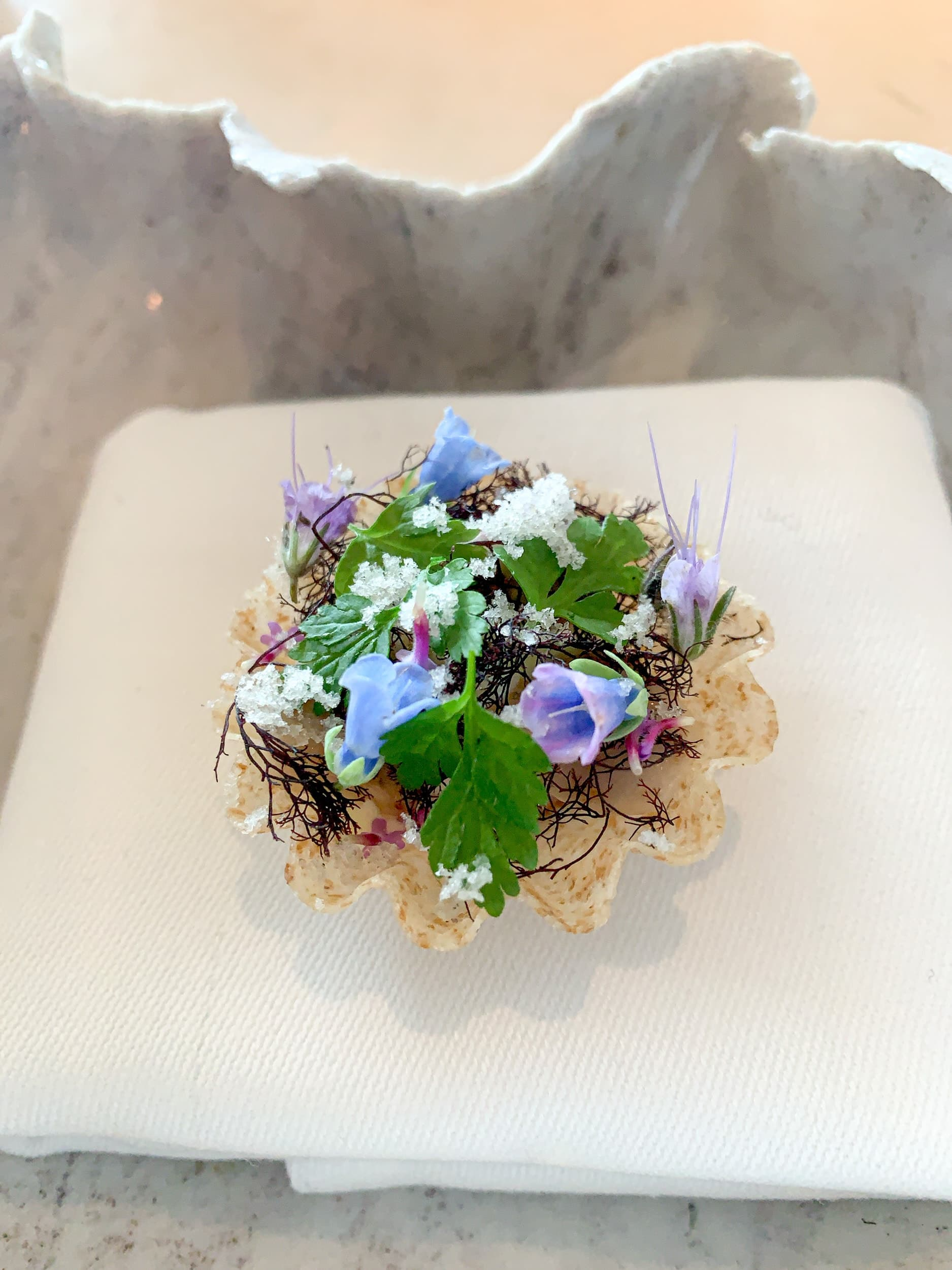 Oyster tartlet with cucumber and truffle seaweed