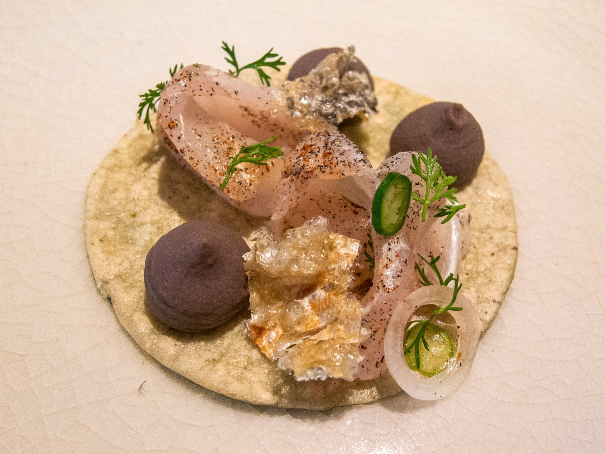 Fish ceviche taco with crispy fish skin and beans