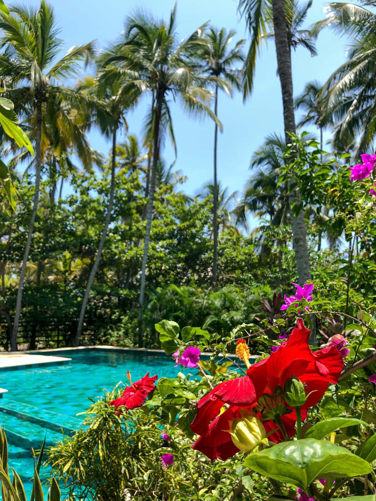Cayena Beach Villa garden