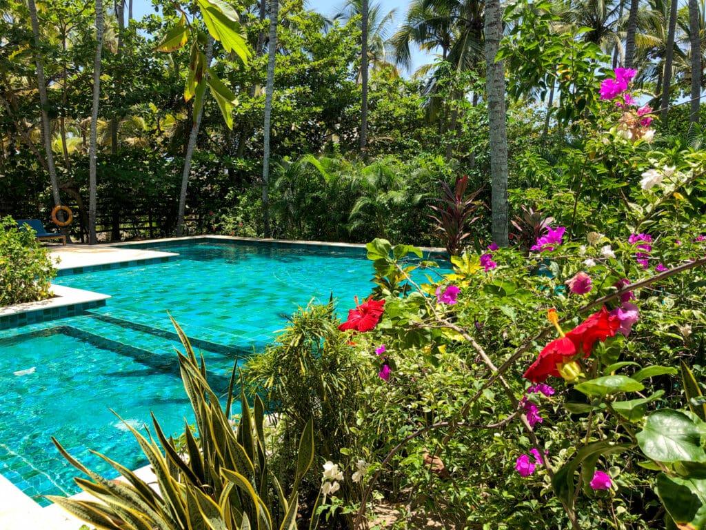 Flowers at Cayena Beach Villa